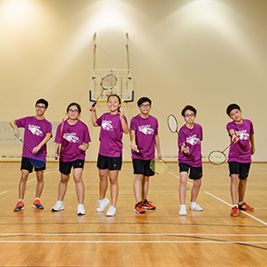 School Brass Badminton